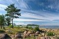 Letipea coast - panoramio.jpg