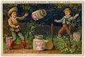 Liebig Company Trading Card Ad 2007.137 front.tif
