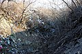 Lisichansk-Kongerss-Yar7.jpg