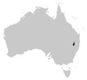 Litoria piperata distribution.PNG