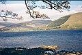 Loch Earn - geograph.org.uk - 128271.jpg