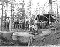 Logging crew and Willamette donkey engine, Lewis Mills and Timber Company, Fern Creek Camp, ca 1922 (KINSEY 210).jpeg