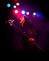 Love Like Blood 1 - Flickr - SoulStealer.co.uk.jpg