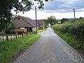 Lower Springs - geograph.org.uk - 480589.jpg