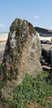 Mégalithe de Peyrehicade.png