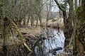 Mönchbruch - Moenchbruch - December 25th 2012 - 04.jpg