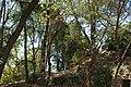 MADRID PARQUE de MADRID COLINA ARTIFICIAL VIEW Ð 6K - panoramio (1).jpg