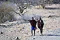 Maasai men walking in the countryside.jpg