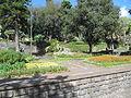 Madeira em Abril de 2011 IMG 1778 (5663222167).jpg