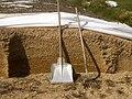 Maissilage Zeilitzheim 1.jpg