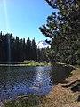 Manzanita Lassen Hike - panoramio.jpg