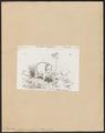 Mastodon maximus - 1700-1880 - Print - Iconographia Zoologica - Special Collections University of Amsterdam - UBA01 IZ22000157.tif