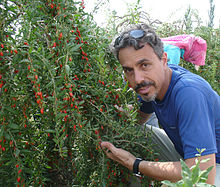 Medicine Hunter Chris Kilham with Goji Berry in China.jpg