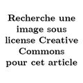 Message temporaire recherche image cc.png
