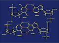 Methylation sites2.jpg
