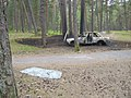 Meza trofeja, pamesta masina kura tika izdomeleta un velak aizdedzinata - panoramio (3).jpg