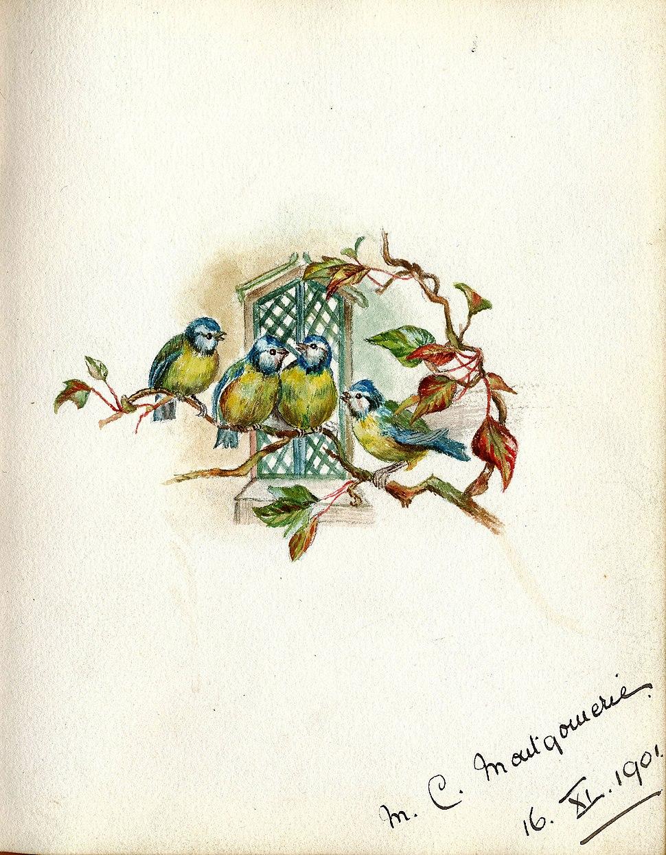 Minnie Montgomerie 1901