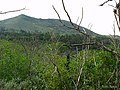 Mirando al pico de osorio - panoramio.jpg