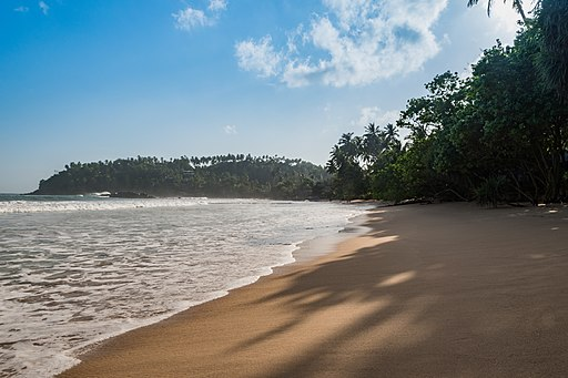 Mirissa beach Sri Lanka (29959458812)