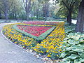 Mokotów - Park Dreszera - klomby kwiatowe.jpg