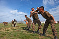 Mongolian service members and police officers rehearse baton techniques during Non-Lethal Weapons Executive Seminar (NOLES) 13 at Five Hills Training Area, Mongolia, Aug. 19, 2013 130819-M-MG222-004.jpg