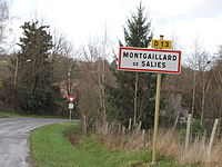Montgaillard-de-Salies.JPG