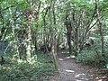 Moor Park, Footpath by Sandy Lodge Golf Club - geograph.org.uk - 1384405.jpg