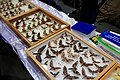Moscow International Insect Fair 2016 (30162466756).jpg