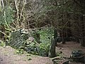 Moss-covered ruin on the main forest track - geograph.org.uk - 303251.jpg