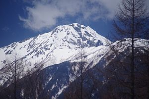 Mt.Kita from Yashajin Pass.jpg