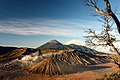 Mt. Bromo.jpg