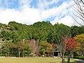 Mt Hachigamaru.jpg