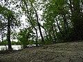 Muddy riverbank in Hyland Provincial Park, Manitoba.jpg