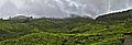 Munnar Panorama.jpg