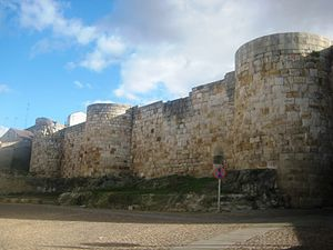 Battle of Alhandic - The walls of Zamora.