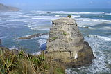 Wild coast and gannet colony - Motutara Island