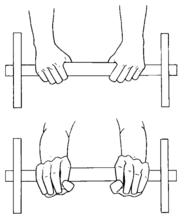 Renforcement musculaire/Exercices/Exercices du membre ...