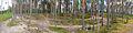 Muurame - paths.jpg