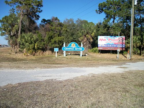 Crystal River chiropractor