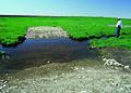 NRCSSD01032 - South Dakota (6083)(NRCS Photo Gallery).jpg