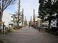 Nadeshiko-no-Michi 01.jpg