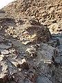 Namibia - P9123850 (15120893769).jpg