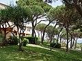Nartelle - panoramio - Frans-Banja Mulder (2).jpg