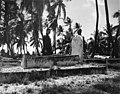 Native cemetery on Bikini Island, summer 1947 (DONALDSON 34).jpeg