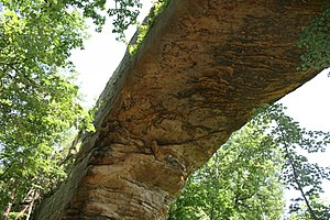 Natural Bridge State Resort Park - Image: Natural Bridge Below