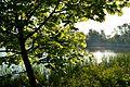 Naturschutzgebiet Mittleres Innerstetal mit Kanstein - Derneburg - Mariensee (9).JPG