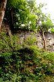 Naturschutzgebiet Saupark - Kleiner Deister - Felsformation der oberen Jura (Korallenoolith) (13).jpg