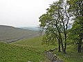 Near Jewelknoll Plantation, Peak Forest - geograph.org.uk - 411723.jpg