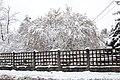 Neige à Saint-Rémy-lès-Chevreuse le 7 février 2018 - 18.jpg
