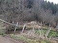 Neu-Belgisch (Preußisch)-Luxemburgischer Grenzstein Nr. 63 (2).jpg